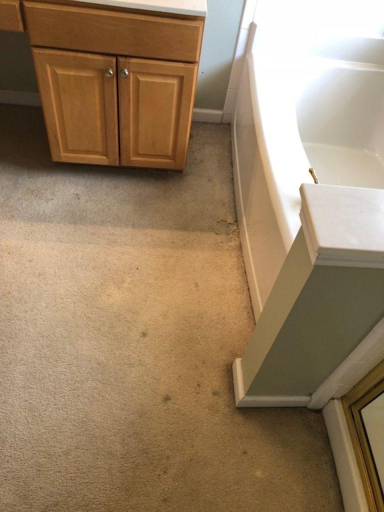 Carpet In Master Bathroom-