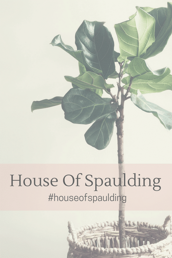 House of Spaulding